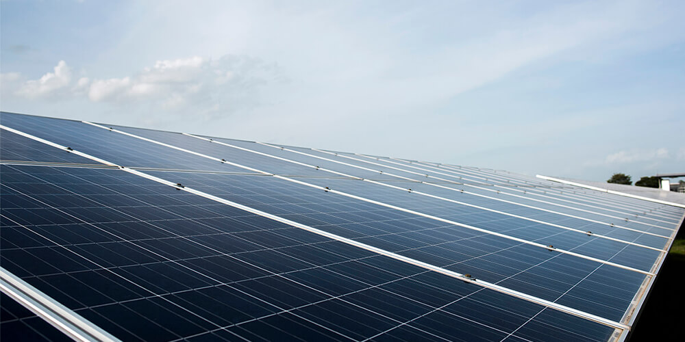 Agencia para huertos solares